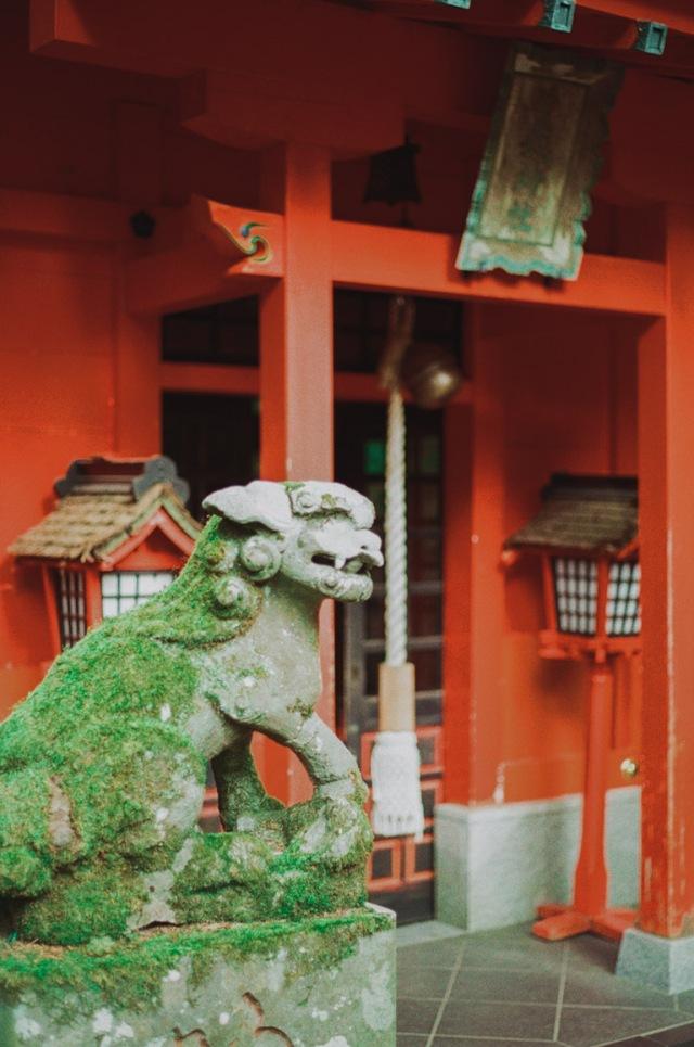 japannew-035