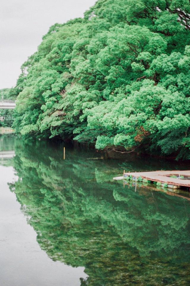 japannew-073